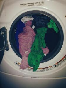 moldy laundry