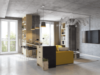 Modern Living Room And Kitchen Combo With Industrial