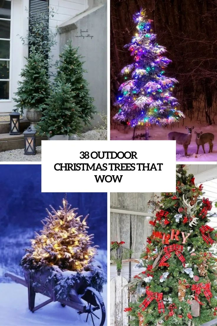 51 exquisite totally white vintage christmas ideas digsdigs - 51 Exquisite Totally White Vintage Christmas Ideas Digsdigs 38 Outdoor Christmas Trees That Wow Download