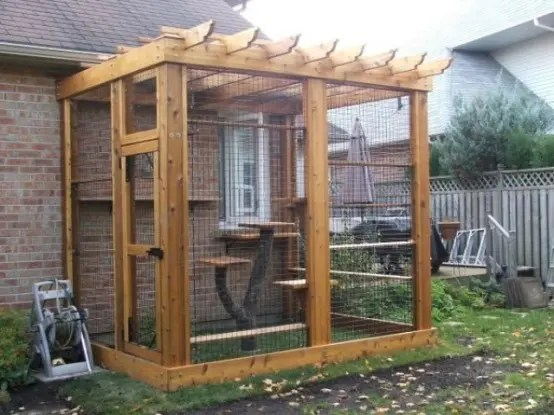 26 Safe And Smartly Organized Outdoor Cat Areas Digsdigs