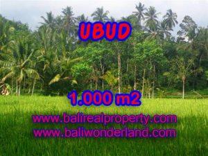 Tanah dijual di Ubud 1.000 m2 view sawah di Ubud Payangan