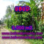 Tanah dijual di Ubud Bali view tebing