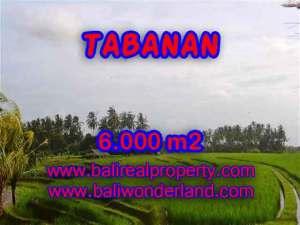 DI JUAL TANAH DI TABANAN BALI TJTB093 - PELUANG INVESTASI PROPERTY DI BALI