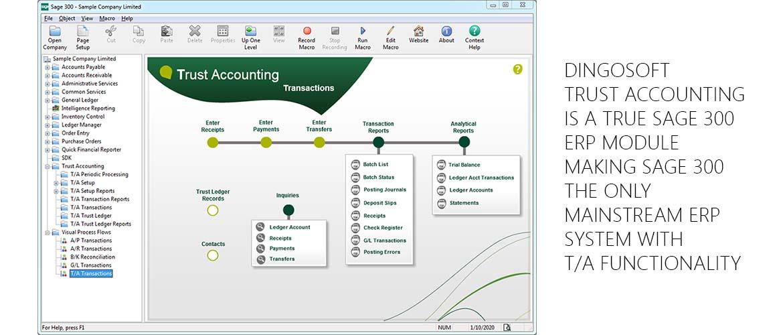 Dingosoft Trust Accounting
