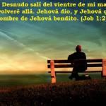La bendición por esperar en el Señor
