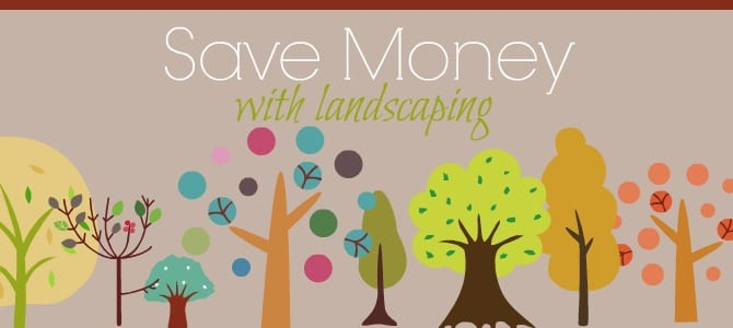 How to Use Landscaping for Energy Savings