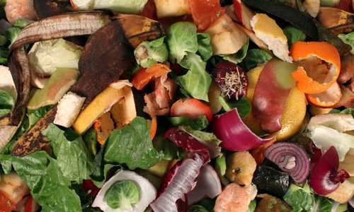 7 Facts for Composting