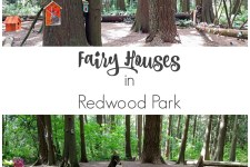 Places to see: Fairy Houses in Redwood Park