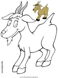 Disegno capretta: personaggio cartone animato da colorare