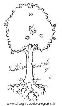 Disegno Piante Alberi 02 Categoria Natura Da Colorare