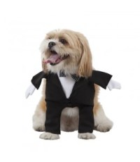 Buy Costumes for Dogs, Batman for only 15.00  costume ...