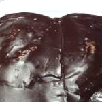Palmera de chocolate de Formentor