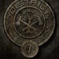 Distretto 7