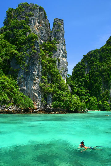 Reef Girl Wallpaper Phi Phi Islands Information Guide Travel Facts And