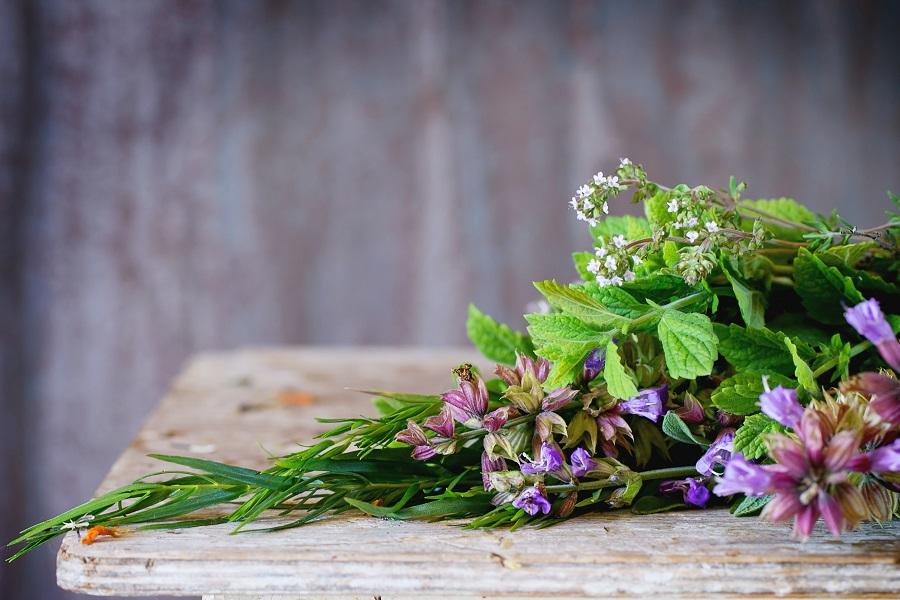 Fresh herbs for Four Thieves Vinegar