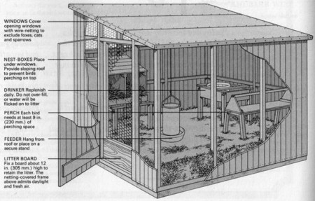 keeping chickens - deep-litter unit