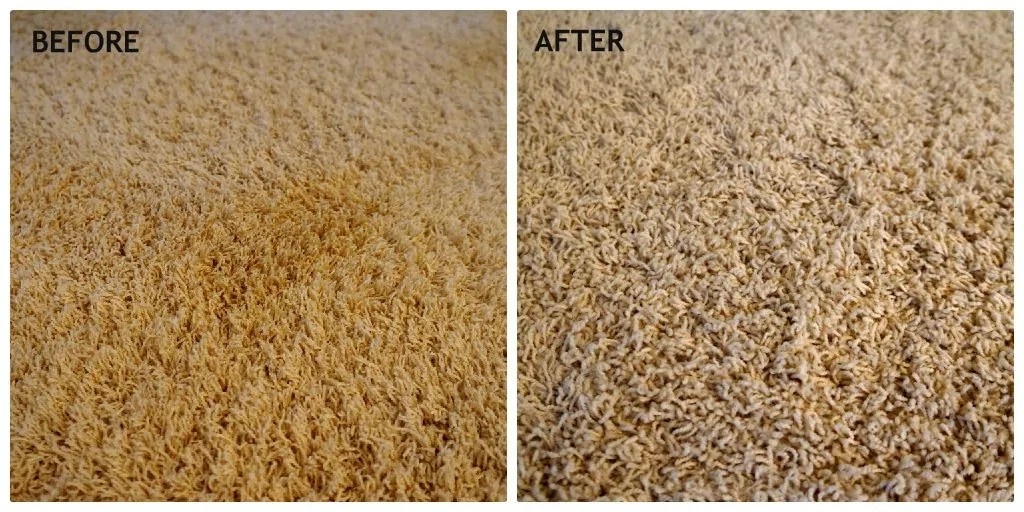 How To Get Tough Stains Out Of Carpet Naturally