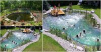 Magical Outdoor DIY: How Make An All-Natural Swimming Pond ...