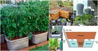 15 DIY Self Watering Planters That Make Container ...