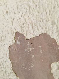 Artex or textured paint - can anybody tell from s photo ...
