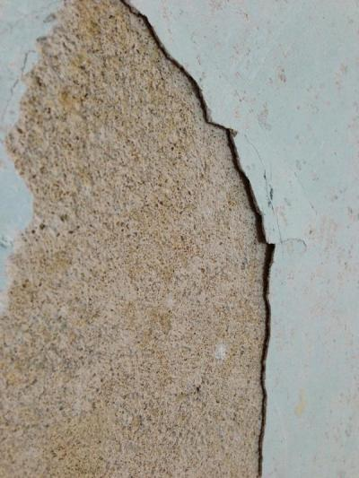 1960s house; state of walls after stripping wallpaper | DIYnot Forums