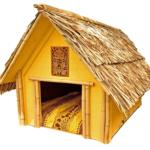 Dog houses: Necessity or Luxury?