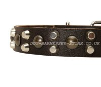 Leather Dog Collar with Plates and Pyramids - 46.90