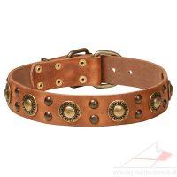 Luxury Leather Dog Collar | Designer Dog Collar NEW 2015 ...