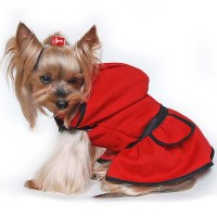 Dog Clothes For Yorkies   www.imgkid.com - The Image Kid ...