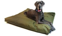 Extra Large Bed Dogs For Sale | Dog Beds Canada