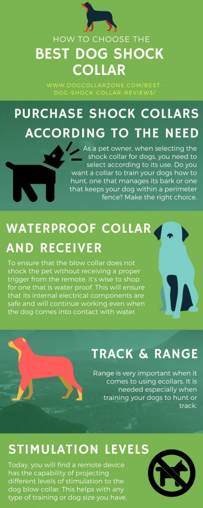 Dog Shock Range Collar