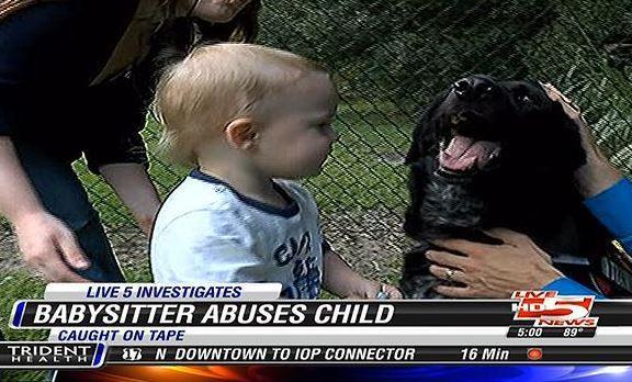 Family Dog Alerts Parents to Abusive Babysitter - The Dogington Post - pet babysitter