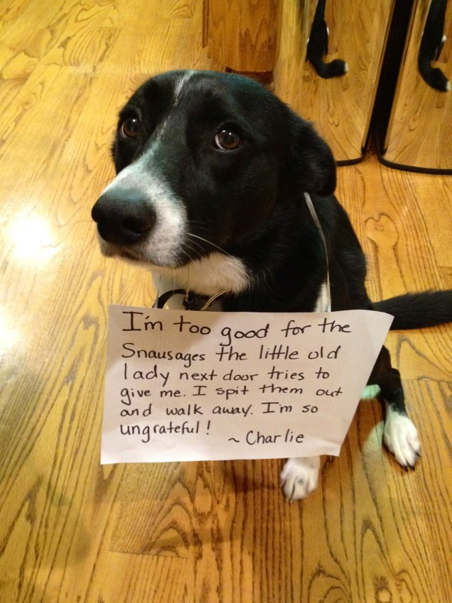 Charlie Is An Ungrateful Treat Snob