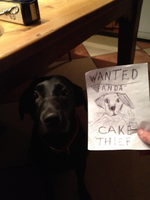 Wanted Panda Birthday Cake Thief