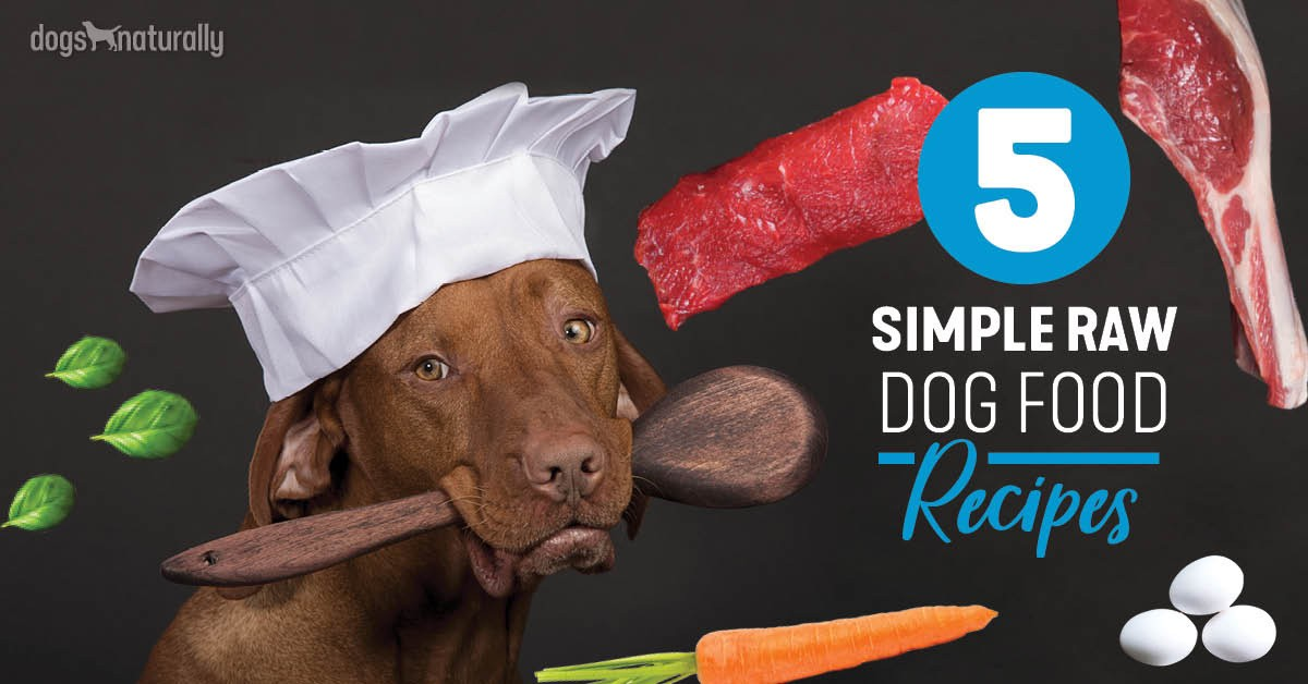 5 Simple Recipes For Raw Dog Food