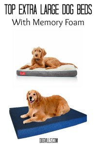 Top 10 Extra Large Dog Beds With Memory Foam