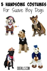 5 Handsome Halloween Dog Costumes