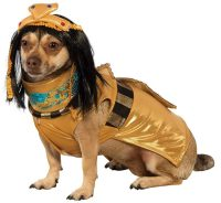 12 Howling Awesome Halloween Costume Ideas for Dogs