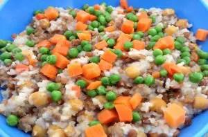 healthy homemeade dog food