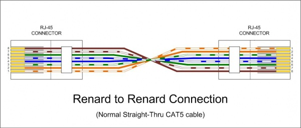 For The Cat 5 Cable Rj45 Jack Wiring Diagram Wiki Renard To Renard Data Cable Jpg