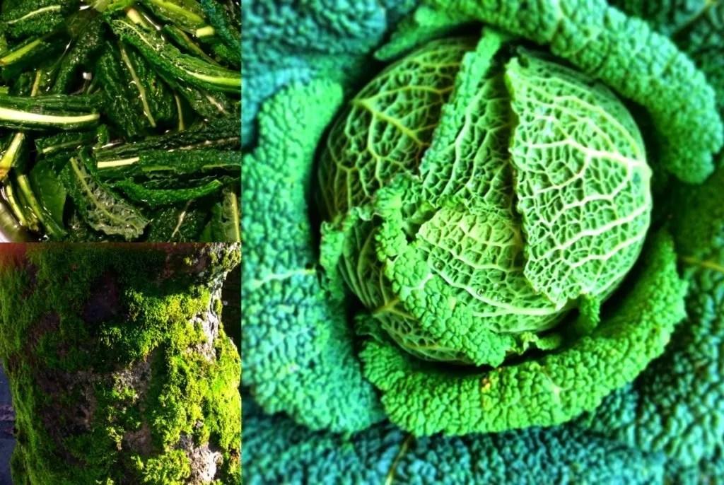 Gennaio con Cucina Naturale e Biologica
