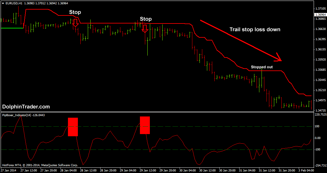 beep forex signal review