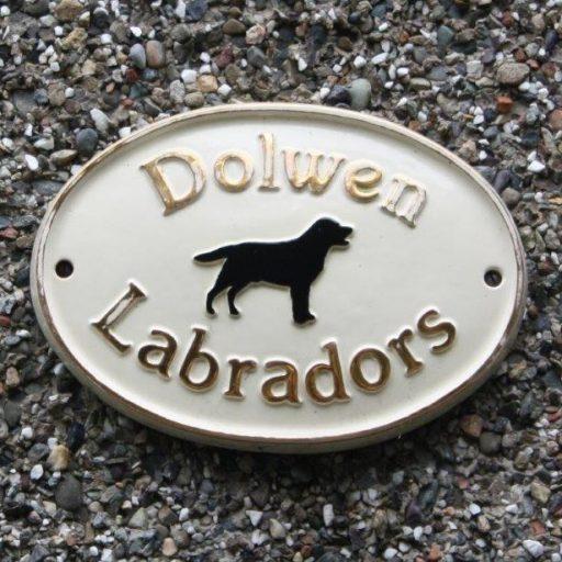 Dolwen Labradors