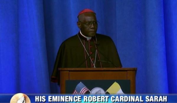 Cardinal Sarah Caption