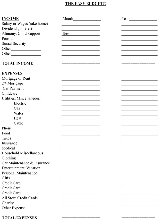 Easy Budget Form for Women\u0027s Financial Planning - free budget form
