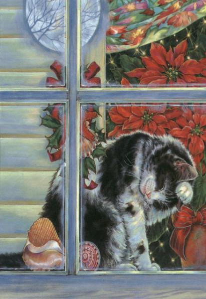 Cars Wallpaper Gif Race Studios Cats
