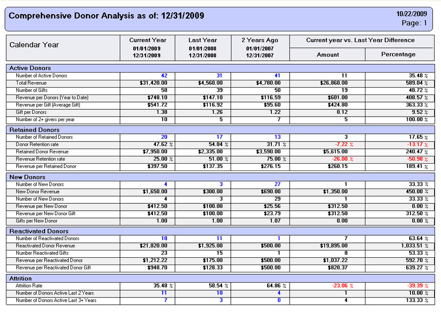 non profit monthly financial report template - Maggilocustdesign - Finance Report Format