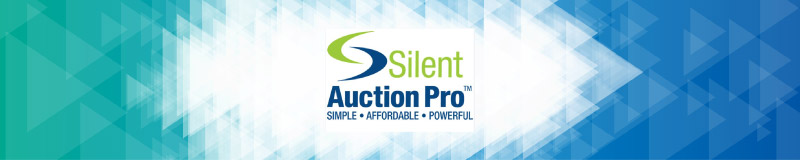 The Top 10 Charity Auction Websites (Reviewed and Rated) DonorSearch