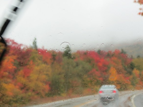 foliage along Kancamagus in the rain