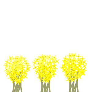 forsythia row